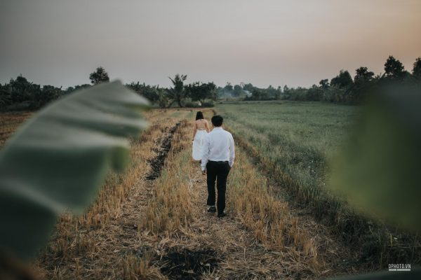 engagement on paddy field vietnam 3