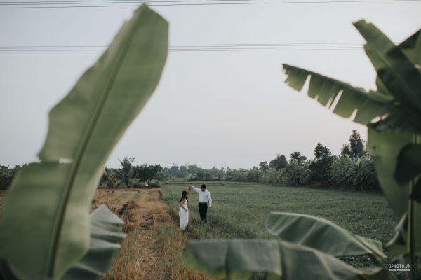 engagement on paddy field vietnam 2